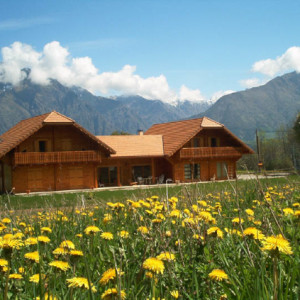 Chalet des Alpages in field of yellow flowers