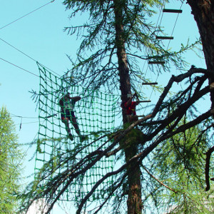 High Ropes Adventure on the spider net