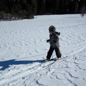 Cross country skiing little boy