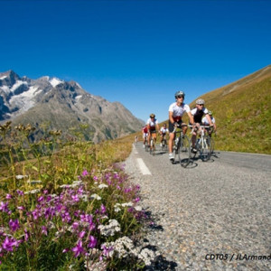 Road Cycling in the French Alps with flowers