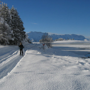 Snowshoeing around a lake
