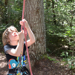 tree climbing - child belaying matthew