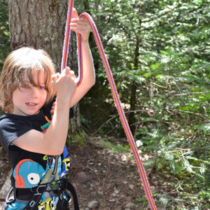 tree climbing matthew belaying