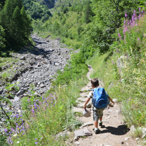 walking in the French Alps path