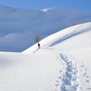 snowshoeing in the Alps winter walking