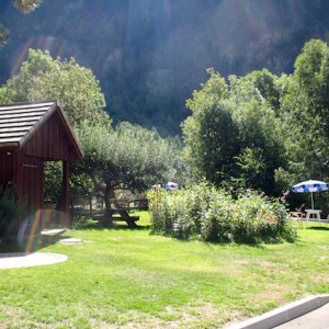 Hotel Val des Sources in the French Alps garden