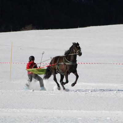 Ski Joering