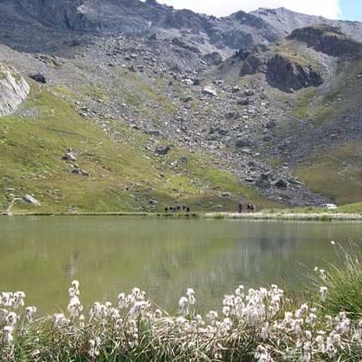 Refuge de la Blanche lake in Summer
