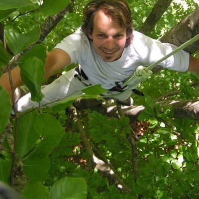 Tree Climbing Face in trees