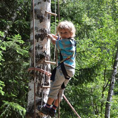Tree Climbing - child in tree