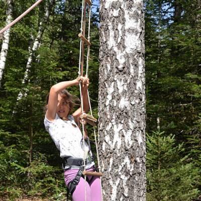 Tree Climbing climbing ladder