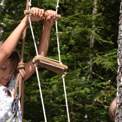 Tree Climbing close up of ladder