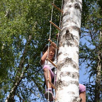 TRee climbing person in tree