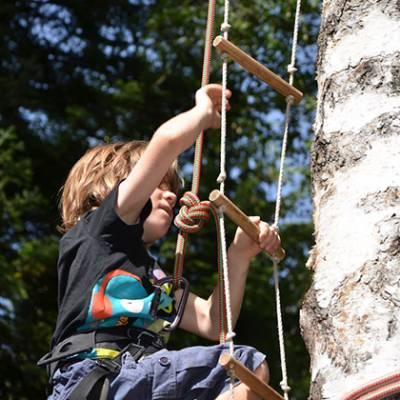 Tree Climbing close up child climbing ladder