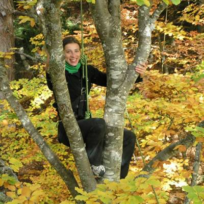 Tree Climbing in the Autumn
