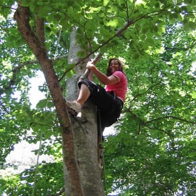 Tree Climbing mum
