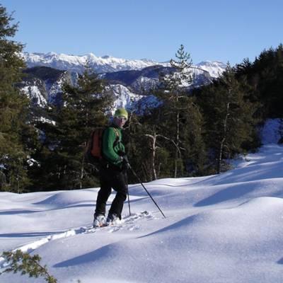 Ski Touring in the Alps