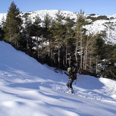 Ski Touring in Les Monges