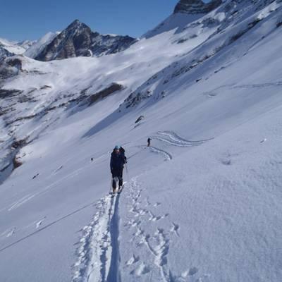 Ski touring skinning across slope