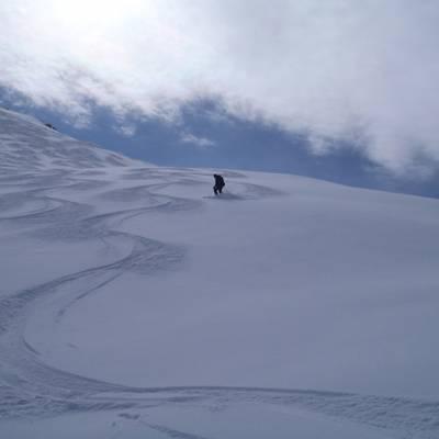 Ski Touring descent making tracks