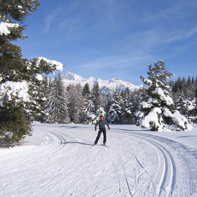 Cross Country skiing through snow laden trees