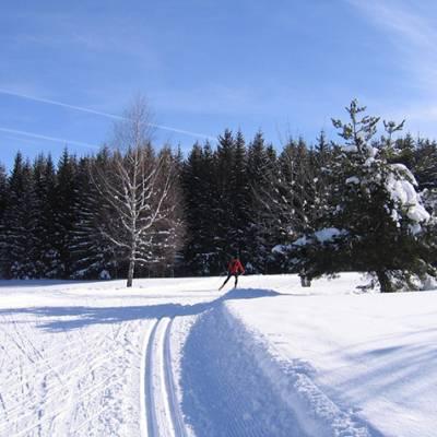 Cross country ski - nice tracks in the snow