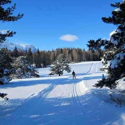 Cross country skiing into the distance