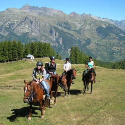Horse riding in the Alpine Meadows of the Alps