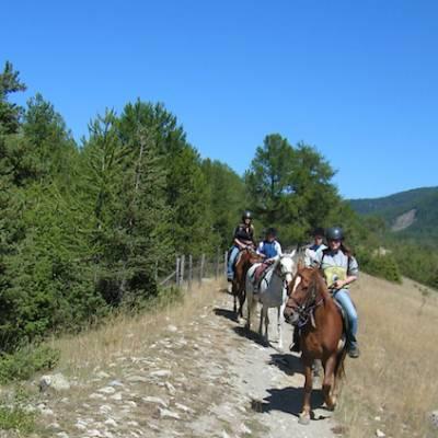 Horse Riding along a piste