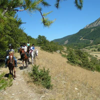 Horse riding in the french Alps woods and mountain