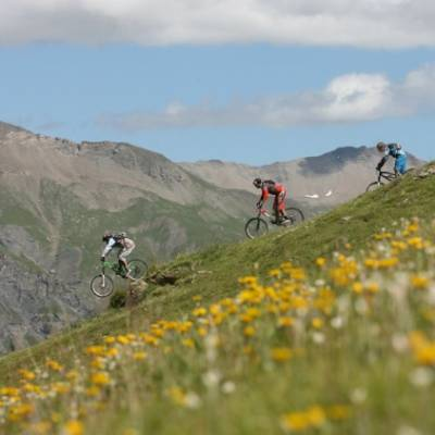 mountain biking through flowers