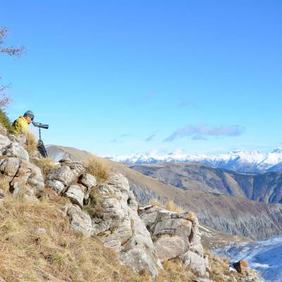 wolf-tracking-with-Undiscovered-Mountains-in-the-Alps-(1-of-1)-4.jpg
