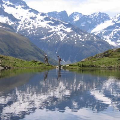 summer-in-high-alps.jpg