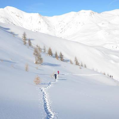 snowshoeing with undiscovered mountains (1 of 1)-10.jpg
