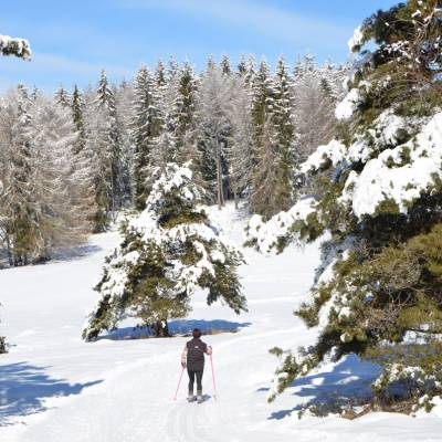 classic-cross-country-skiing-in-the-Southern-French-Alps.jpg