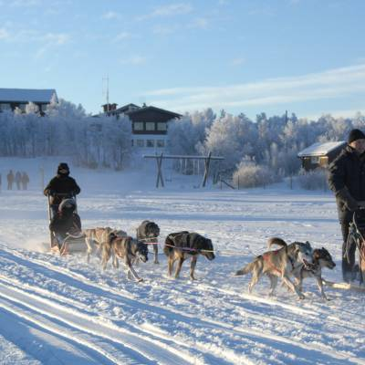 Husky Sledding in Norway on cross country winter activity holiday (1 of 1)-3.jpg