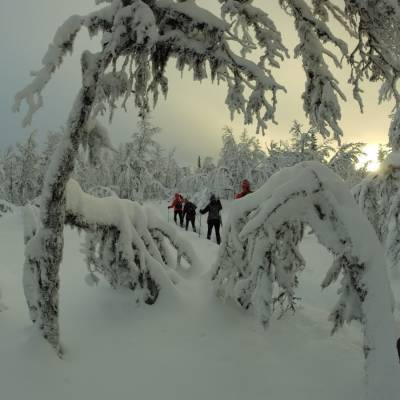 Snowshoeing  in Norway on cross country winter activity holiday (1 of 1)-2.jpg