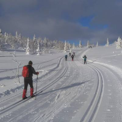 cross country skiing in Norway (1 of 1)-10.jpg