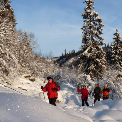 Snowshoeing  in Norway on cross country winter activity holiday (1 of 1)-5.jpg