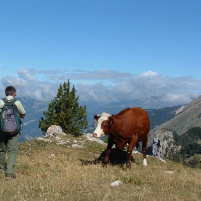 retrouvance walking in the Alps in the Buech Devoluy (3 of 23).jpg