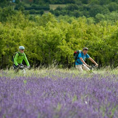 ebiking alps to provence (51 of 55).jpg