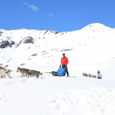 husky sledding in the alps (1 of 1)-2.jpg