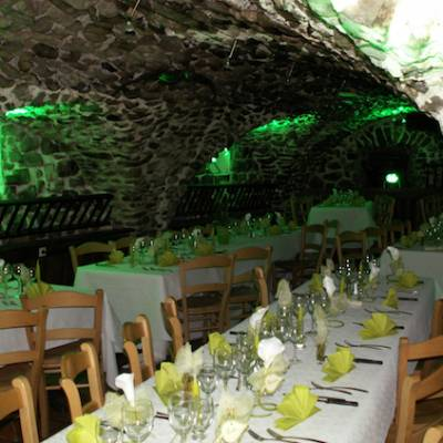 Hotel Les Autanes - Ancelle in the Alps vaulted restaurant theme green