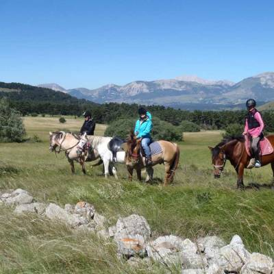 horse-riding-on-a-summer-activity-holiday-in-the-Alps.jpg